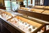 Musée de Minéralogie de MINES ParisTech