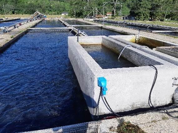 Xylem protège l'eau des bassins piscicoles de La Source