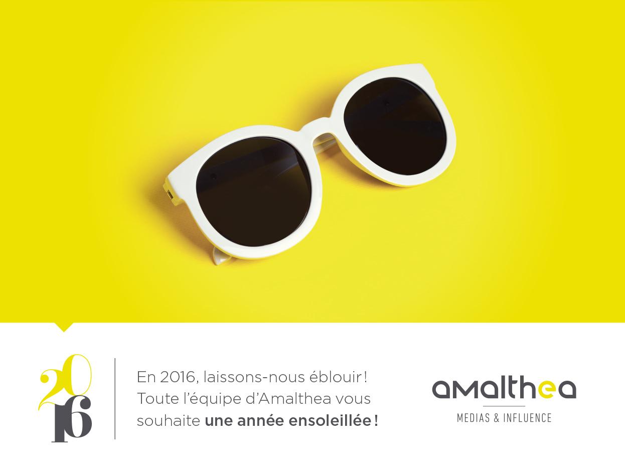 Toute l'équipe Amalthea vous présente ses meilleurs voeux pour 2016
